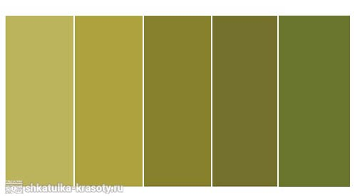 Оливковый цвет сочетания