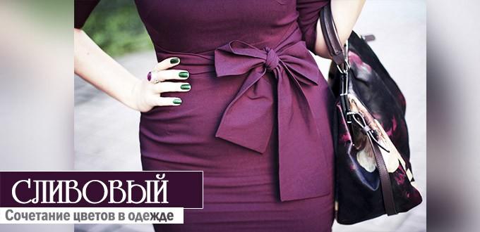 сочетание сливового цвета в одежде
