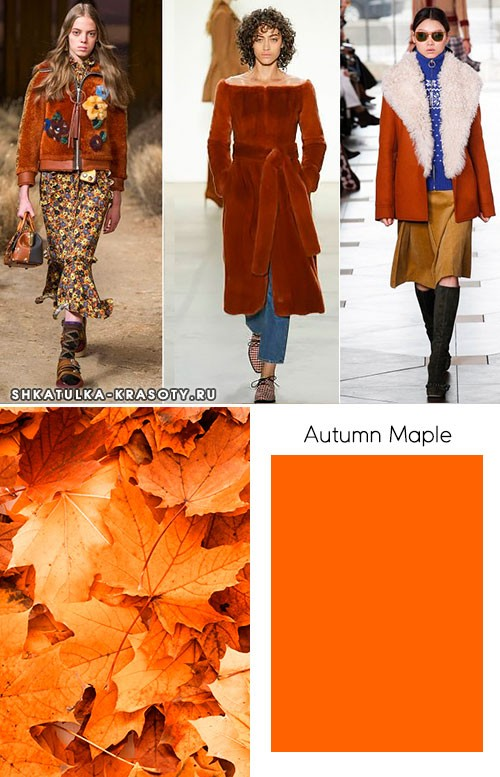 Модные цвета осень-зима 2017-2018