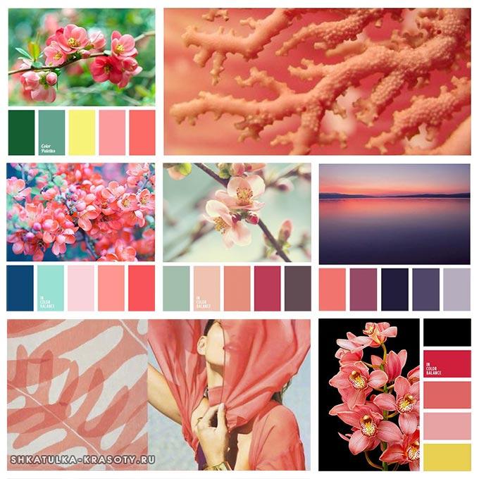 палитра кораллового цвета в одежде