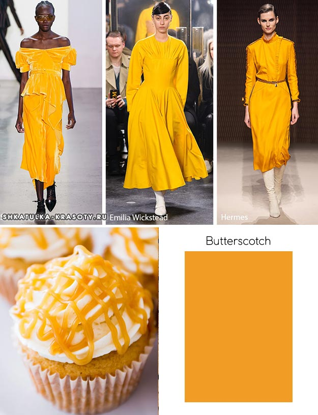 Butterscotch (Ирис)