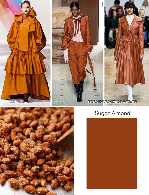 Sugar Almond (Сахарный миндаль) - модный цвет осень зима 2019 2020