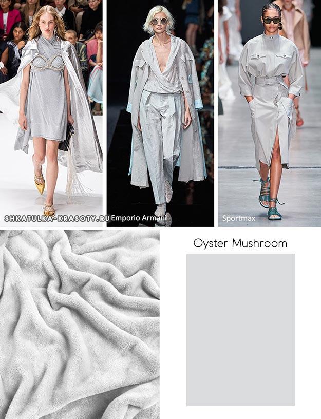 Oyster Mushroom (Вешенка)