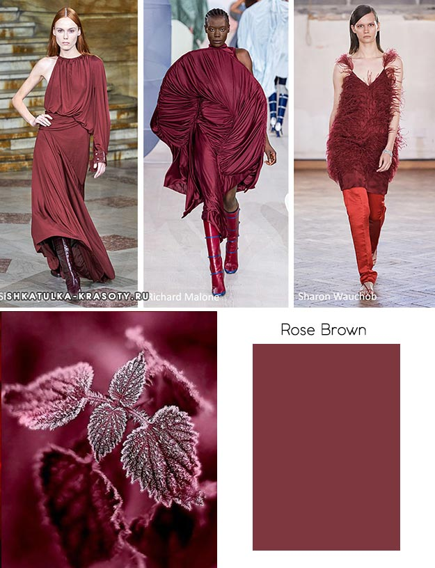 Rose Brown (Коричневая роза)