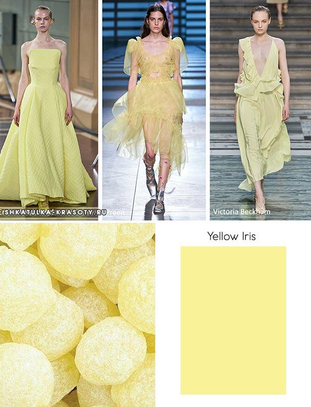 Yellow Iris (Желтый ирис)