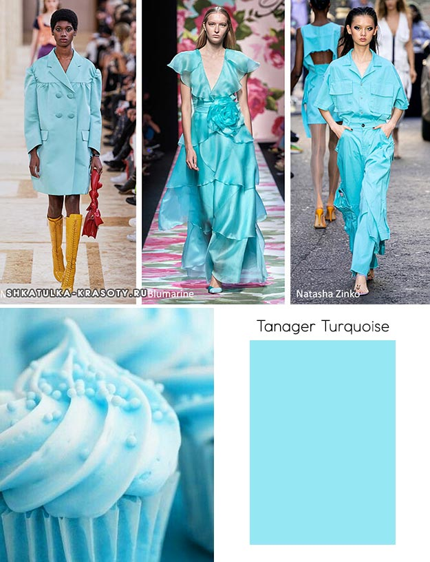 Tanager Turquoise (Бирюзовая птица)