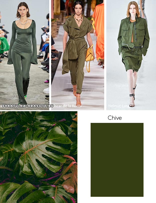модный цвет весны лета 2020 Chive (Чесночный)